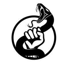 black snake in hand vector image