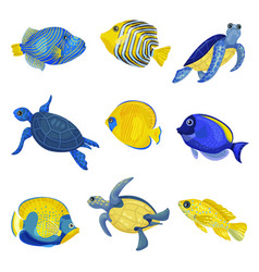 Set different exotic fishes and turtles vector