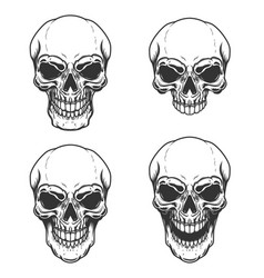 set of vintage skull design element for logo vector image
