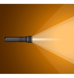 beam of light from flashlight Black metal vector image