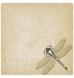 dragonfly insect old background vector image vector image