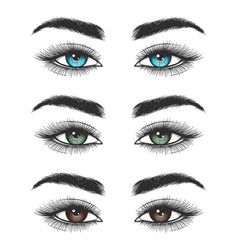 look of colorful female eyes vector image vector image