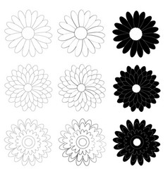 black and white daisy flower on white background vector image vector image