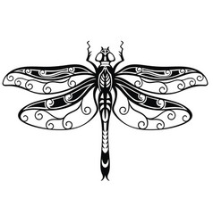 decorative dragonfly vector image