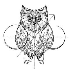 Bird owl head triangular icon vector