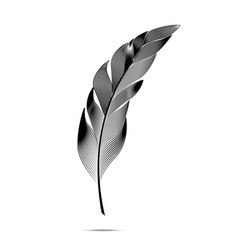Black and white large curved fluffy feather vector