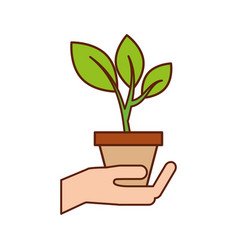hand with pot plant growth business finance vector image