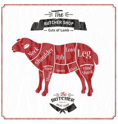 Lamb or mutton cuts diagram butcher shop vector