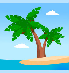 palm trees on uninhabited island sea or ocean vector image