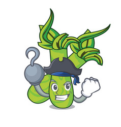 Pirate wasabi character cartoon style vector
