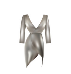 silver dress vector image