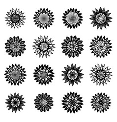 Sunflower blossom icons set simple style vector