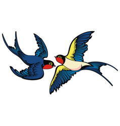 swallows on white background vector image
