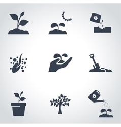 black growing icon set vector image