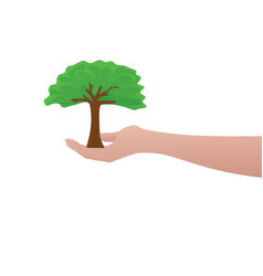 human hand hold tree vector image