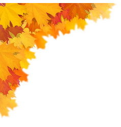 Maple leaf in corner with blur effect vector