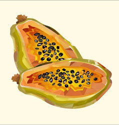 papaya polygon vector image