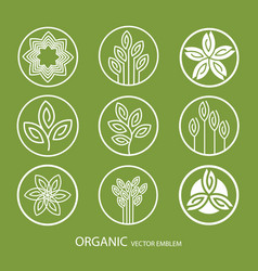set abstract organic emblem outline vector image