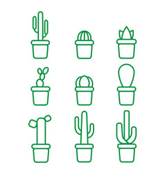 set with green line isolatet icons of cactus vector image