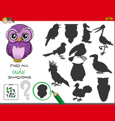 Shadows game with owl characters vector