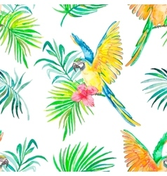 Macaw seamless pattern Transparent background vector image
