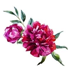 Nice watercolor flowers vector image