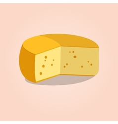Wheel of cheese vector image vector image