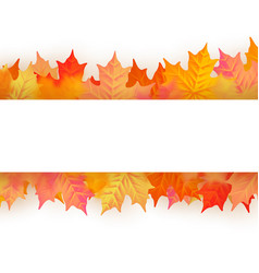 autumn poster with beautiful color leaves eps 10 vector image
