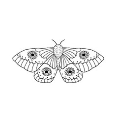 butterfly in doodle style vector image