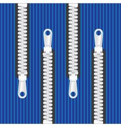 Clothing zips vector image vector image