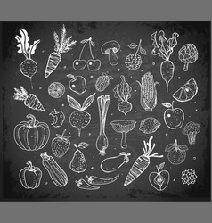 Doodle fruits and vegetables on blackboard vector