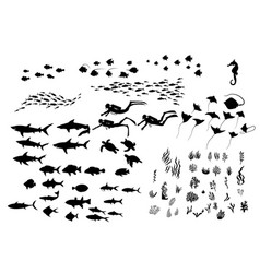 set silhouette sea wildlife vector image