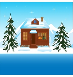 Beautiful house beside yard in winter vector image