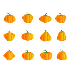 color pumpkin icons vector image