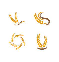grain logo design template vector image