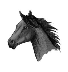 Horse races symbol sketch equine head vector