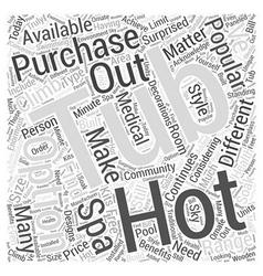 Hot Tub Options Word Cloud Concept vector image