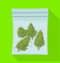 Isolated object marijuana and bag symbol vector