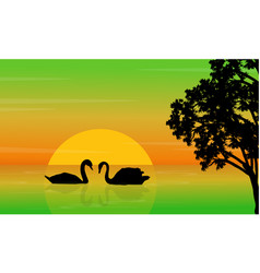 Nature landscape swan on lake silhouettes vector