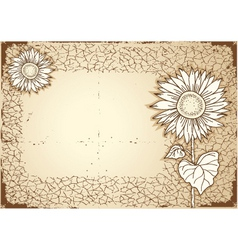 vintage sunflower vector image
