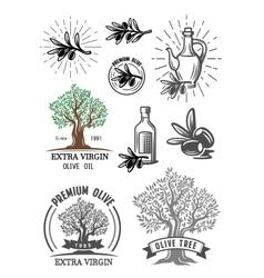 color olive symbol vector image vector image