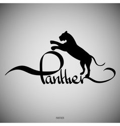 Panther Calligraphic elements vector image