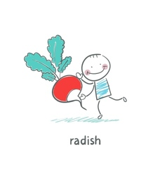 Radishes and people vector image vector image