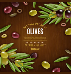 natural olives background vector image