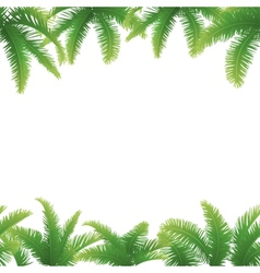 Seamless background palm leaves vector image vector image