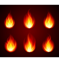 Various Flames vector image vector image