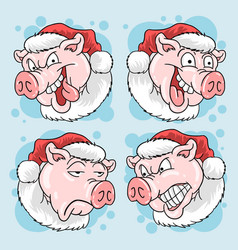 Christmas santa claus pig head pork 4 expression vector