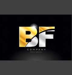 Combination letter bf b f alphabet with gold vector
