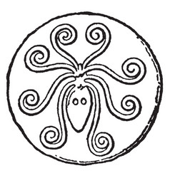 Cuttlefish pendant vintage engraving vector