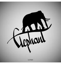 Elephant Calligraphic elements vector
